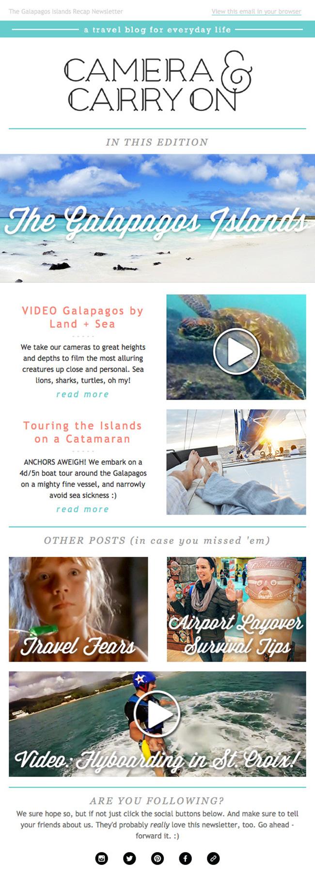 newsletter_cameraandcarryon_portfolio